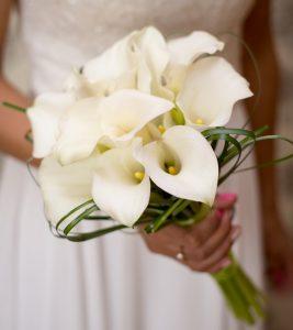 Fiori Bianchi X Matrimonio.Gli 8 Fiori Piu Usati Per Il Matrimonio In Primavera